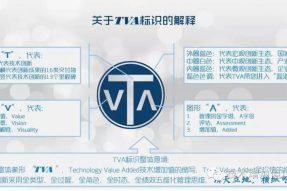 什么是TVA?